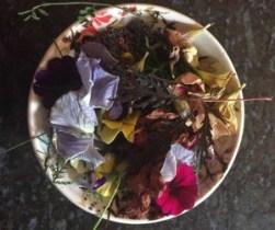 Bowl-of-botanicals
